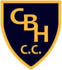 Coombe Bissett & Homington Cricket Club