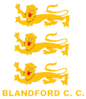 Blandford Cricket Club