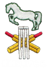 Winsley Cricket Club