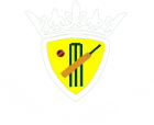 Bere Regis Cricket Club