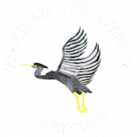 Pavenham and Felmersham Cricket Club